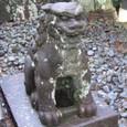 奥者拝殿の狛犬 阿形
