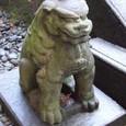 奥者拝殿の狛犬 吽形