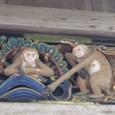 神厩舎 結婚する猿
