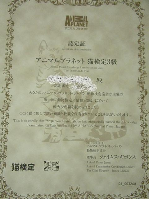 2010_09170029
