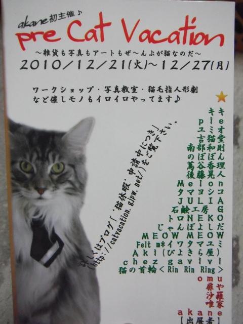 2010_12290302