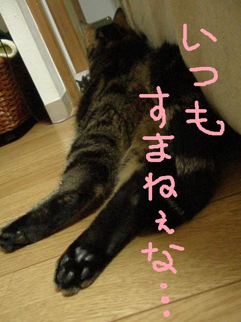 2011_06300098