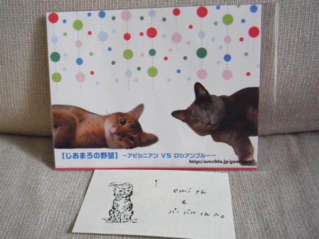 2011_09240019